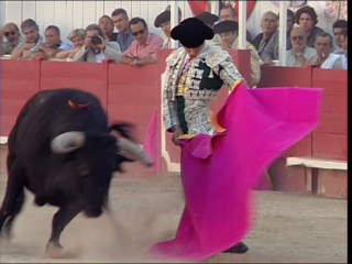 a documentary film : Bullfighting : Love to Death