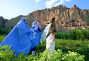 a documentary film : Afghanistan: Adventurers of the Lost Treasures
