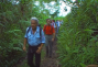 a documentary film : Guyana: Green Paradise