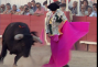 un film documentaire : Toros : l'amour à mort